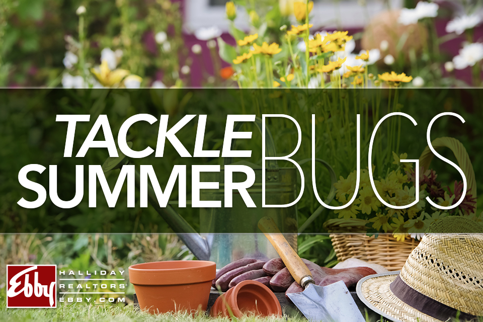 Tackle Summer Bugs
