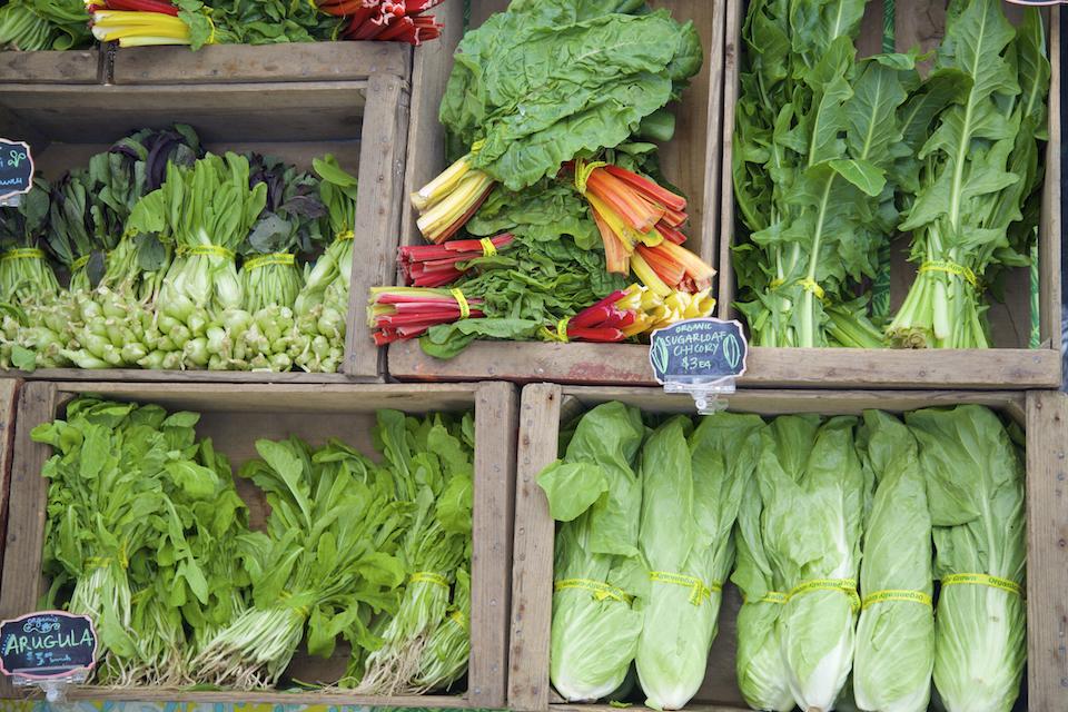 Leaf vegetables at the farmer's market, including chard, arugula, tatsoi, dandelion greens, and chicory