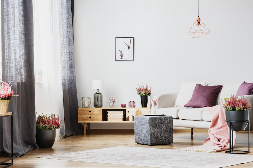 Wooden cupboard and white sofa in a living room interior with heather